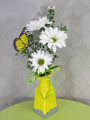 Butterly on Daisies