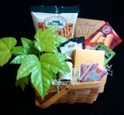 10 Minute Break Basket (with green plant)