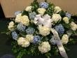 Pequa Blue White Hydrangea Blanket