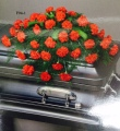 Sympathy red casket spray