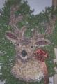 Pequa Deer Head Arrangement