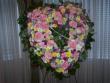 Pequa Spring Open Heart