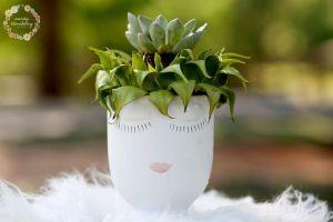 Succulent Celfie