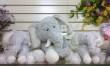 Baby Gift - 9 Elephant Plush