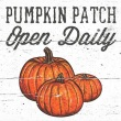 Coaster - Fall 6 Pumpkin Patch