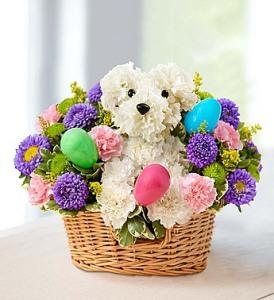 Hoppy Easter Pup