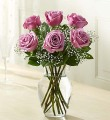 Long Stem Lavender Roses