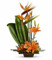 The Exotic Grace Bouquet