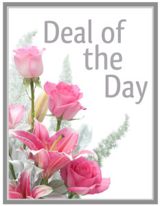 Deal of the Day-Winter