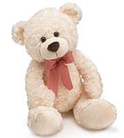 Plush Cream Jackson Bear