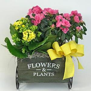 Blooming Flower Cart Planter