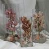 Ohlala Orchid Cylinder Set