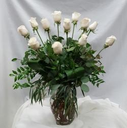 Vendella White Rose