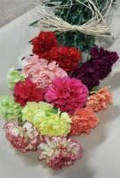 Caan Floral - Bountiful Blooms