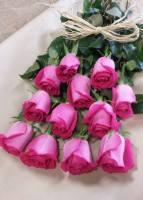 Caan Floral - Enchantment