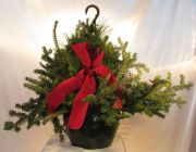 Caan Floral - Evergreen Hanging Basket