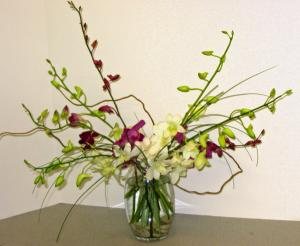 The Bel Aire Striking Orchids Bouquet