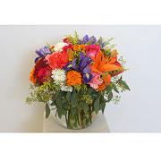 Bright Beauty Floral Arrangement