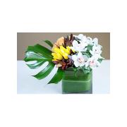 Weho Leafy Tale Flower Arrangement