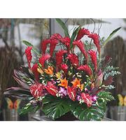 Tropical Sunset Flower Arrangement
