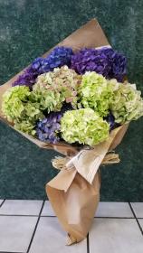 Mixed Hydrangea Bouquet