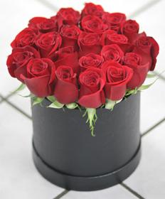 LA Red Rose Contempo