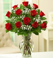 Premium Long Stem Red Roses
