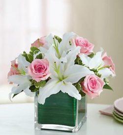Modern Embrace Pink Rose & Lily Cube