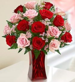 Eighteen Pink and Red Roses