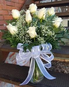 Dozen White Roses with Babys Breath