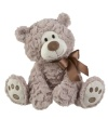 Gifford Bear