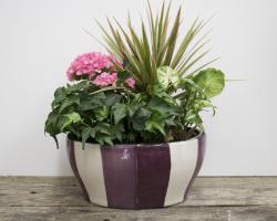 Wave Ceramic Flowering Planter