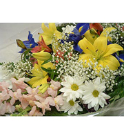 Assorted Cut Bouquet