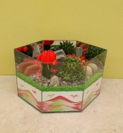 Cactus Garden 4C