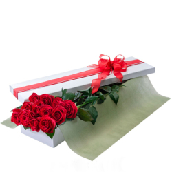 Long Stem Roses Boxed