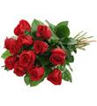 Dozen Cut Roses