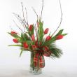 Tulips Noel