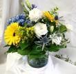 Oleander' Bright Sunshiny Day