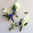 Oleander's Total Sophistication Boutonniere
