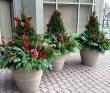 Winter Wonderland Planter