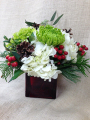 Oleander's Winter Wishes