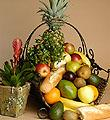 Gourmet Basket 111