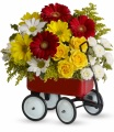 TELEFLORA'S BABY'S FIRST WAGON