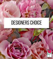 Designers Choice - Baby Girl