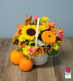 Beretania's Fall Basket - w/ Mini Pumpkin
