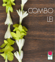 Combo Lei - Green Dendro/Tuberose