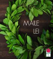 Premium Maile Lei - [very full]