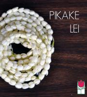 [Out Of Season] Pikake Lei - 12 strands