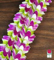 Mia Orchid Lei