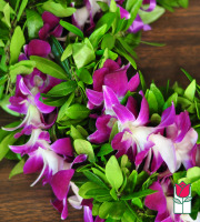 Maile Orchid Lei